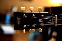 80's Yamaha (chandlermcp) Tags: band music guitar acoustic yamaha