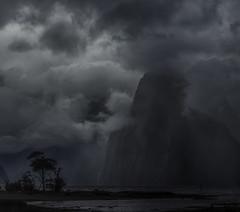 Facing the Storm: Milford Sound, New Zealand (desimage) Tags: cyclonegita newzealand southisland milfordsound clouds tree rain waterfall see fjord sea mountains coast light moody drama dramatic desimage desgould olympus fiordlandnationalpark