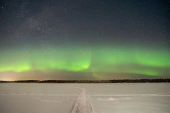 Chasing aurora in Finland (timhughes) Tags: snow ice frozen aurora finland stars north sweetchilly