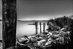 Quiétude... (vedebe) Tags: noiretblanc nb netb bw etang poselongue poseslongues eau nd littoral