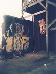 Holga_Rollei_CrossBird_000008 (joannewhiteart) Tags: holga rollei crossbird ilovefilm filmphotography muralfestvancouver muralfest2018 analogue streetphotography