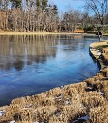 on frozen pond (ekelly80) Tags: dc washingtondc january2019 winter virginia frozen pond water cold reflection suburbs suburbia