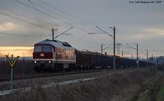 232 088 SLR Roßla 05.02.2019 (Falk Hoffmann) Tags: diesellok eisenbahn bahnhof güterzug dr ludmilla salzlandrail br132 br232