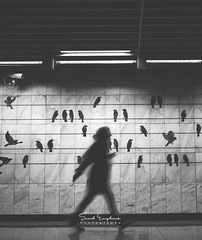 Metro (Senol.Empliouk) Tags: blackandwhite street streetphotography sony sonyalpha ilce7rm3