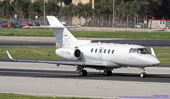 T7-TUN LMML 24-03-2019 Private Hawker Beechcraft 850XP CN 258915 (Burmarrad (Mark) Camenzuli Thank you for the 18) Tags: t7tun lmml 24032019 private hawker beechcraft 850xp cn 258915
