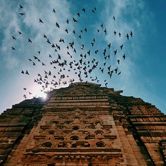 Īśāna. (Gattam Pattam) Tags: architecture temple birds sky flight india stone carving side shade view blue cloud flock hindu nagara dravidian chatiya buddhist arch gwalior shikhara madhya pradesh tourism
