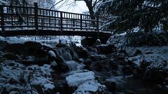 Life is a bridge...wisdom waits... (ana_kapetan_design) Tags: bridge winter snow stream water stone outside duck lake