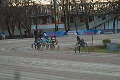 Berlin Trabrennbahn Mariendorf 27.1.2019 (rieblinga) Tags: berlin tempelhof mariendorf trabrennbahn sport pferde rennen wetten renntag 2712019