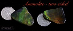 ammolite - two sided (zawaski -- Thank you for your visits & comments) Tags: alberta serves beauty 4hire naturallight noflash canada zawaski©2019 calgary love ambientlight lovepeace editing canonef50mmf25macro zawaski finephotography photog ambieantlight