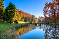 Autumn colors in the arboretum of Aubonne, Switzerland (FotoCorn) Tags: pond autumn colorful multicolor vaud nature reflection switzerland water trees hills fall aubonne lake zwitserland arboretum