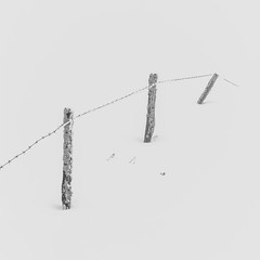Fences in the snow (2/2) (Pascal Riemann) Tags: schnee sauerland deutschland minimalistisch sw natur zaun germany nature schwarzweis snow bw blackandwhite einfarbig fence minimalistic monochrome