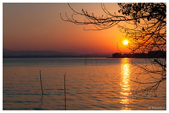Pour réchauffer l'hiver (Pascale_seg) Tags: landscape paysage tramonto sundown italia italie umbria ombrie sanfeliciano riverscape lac lake lago trasimeno trasimène reflets reflections riflessi