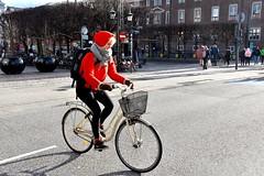 A Danish Girl in Copenhagen (FaceMePLS) Tags: kopenhagen copenhagen denemarken denmark scandinavië facemepls nikond5500 straatfotografie streetphotography meisje jongevrouw woman fiets bike bicycle tweewieler nikesneakers rugzak mustang fietsmand handschoenen gloves