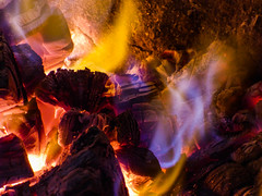 Do Not Touch (Steve Taylor (Photography)) Tags: brown yellow mauve red wood newzealand nz southisland canterbury christchurch log glow winter embers fire flame hot