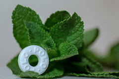 Made of mint (christina.marsh25) Tags: polos mints sweets candy leaves green white macromondays thefirstletterofmysurname