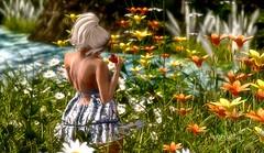 N455 Finding Beauty (Tiffany's Blended Beauty Blog) Tags: deaddollz fameshed truth amitie heart hpmd kidd felix