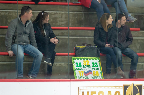 Hockey fans ©  mark6mauno