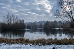 Fin de journée hivernale sur l'étang.