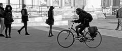 Rush Hour (Obelus2000) Tags: fz2000 fz2500 mono black white blackwhite york street bicycle