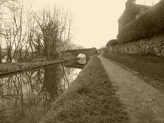 Bridge 19, Brackenbridge Rd, Marple  (Peak Forest Canal)   February 2019 (dave_attrill) Tags: bridge peakforest canal towpath peakdistrict nationalpark cheshire february 2019 cheshirering sepia monochrome tint water waterway
