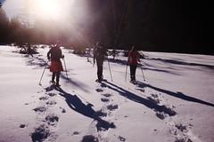 . (boklm) Tags: alpes france fuji100t snow