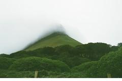 Mount in the Mist (Caroline Kutchka Folger) Tags: green nature colorfilm mountains mountain benbulben ireland countysligo sligo emerald trees 35mm analog canonrebel