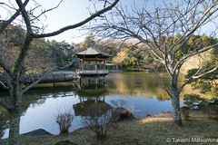 Naritasan Park (takashi_matsumura) Tags: naritasan park shinshoji temple narita chiba japan ngc nikon d5300 成田山公園 成田市 千葉県 afp dx nikkor 1020mm f4556g vr
