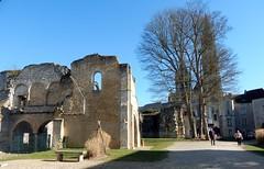 2019 23 février Senlis (Oise) Château royal (areims) Tags: chateau château senlis