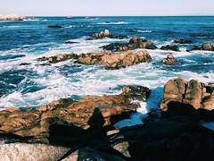 ocean (vhickey25479) Tags: nature pretty blue rocks ocean pacificgrove