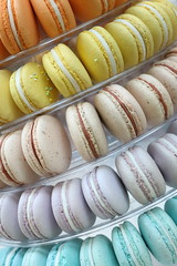 Macaron Rainbow Tower (SOTC 317/365) (gina_blank) Tags: macaron treat dessert baking rainbow colors colours colour color spring food line pattern repetition sotc
