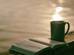 green ceramic mug beside book - Credit to https://myfriendscoffee.com/ (John Beans) Tags: coffee tea cup book cafe coffeebeans shopbeans espresso coffeecup drink