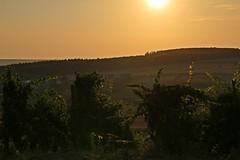 _MG_3468c - 28.08.2019 (hippo1107) Tags: konz oberemmel konzertälchen sonnenuntergang sunset sommer august 2018 abendrot abendstunde radfahren wandern ausruhen entspannen aussicht weinberge wiesen felder grün landschaft landschaftsfotografie marienkapelle kapelle chapbel canoneos70d canon eos 70d bank bench wanderweg ruhe stille
