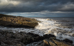 Light and Shadow (He Ro.) Tags: 2018 northumberland craster coast coastline sea waves clouds sunshine light lightandshadow england northeastcoast northeastofengland uk rocks rugged hightide northsea nordsee himmel felsen landschaft wasser küste water