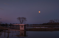 _LCH7381-HDR super moon (snolic...linda) Tags: fujixt2 501 arkansas conway supermoon lakebeaverfork partybarge oldboat evening bluehour sunset
