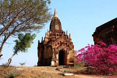 One (Thousand) Temple(s) (jalopes) Tags: bagan