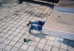 (lemonhats) Tags: fujihdp fujinon2838 38mmfixedlens manualfocus compactcamera automatic aperturepriority lomocolor400 iso400 35mmcolorprintfilm classiccamera vintagecamera traditionalphotography filmphotography analoguephotography filmisnotdead filmisalive shootfilm believeinfilm filmcommunity fpper walking hikarigaoka nerimaku tokyoto japan family