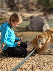 00100lPORTRAIT_00100_BURST20181228151258109_COVER (KevinXHan) Tags: zions national park dog golden retriever cute aww parus trail hike walk nature outdoors google pixel3 photoblog photodiary
