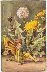 SP_07 (Katcricket007) Tags: flowerfairiesofthespring spring black boy breeches brown butterflywings dandelion dandelionfairy doublet green hose leggings seated shoes shorthair yellow yellowwings