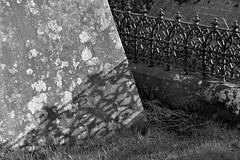 ShadowPlay (Tony Tooth) Tags: nikon d7100 sigma 70mm bw blackandwhite monochrome headstones shadow meerbrook churchyard staffs staffordshire