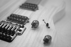 _DSC3911 RGT2020SOL 950 MC (perttustrandman) Tags: ibanez rgt 2020 sol guitar mahogany maple skull knob edgepro
