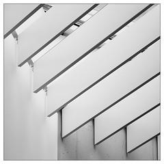Diagonal (frodul) Tags: abstrakt architektur detail diagonale gebäude fenster gestaltung innenansicht konstruktion linie bw einfarbig monochrom sw hannover haus repetition schatten sprengelmuseum niedersachsen deutschland lines