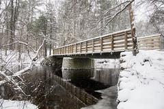 Ipswich River_20190218_028 (falconn67) Tags: footbridge bridge ipswich massachusetts newengland ipswichriver river reflection snow winter weather snowfall canon 5dmarkiii 24105l