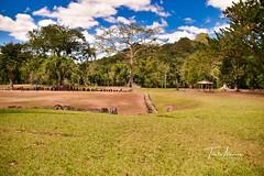 Ceremonial Park Caguana. (Toñito Alvarez Photography) Tags: indigenas parques indios nativos turismo utuado puertorico tourism park indias caribes