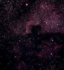 Nordamerikanebel NGC 7000 (ReppiX) Tags: astrofotografie astrofotografia nordamerikanebel ngc7000 milchstrasse milchstrase milkyway sterne nachtfotografie astronomie astrophotography astrophysics astronomy northamericanebula skywatcher