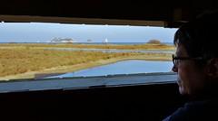 Mirador i guaita d'ocells. (josepponsibusquet.) Tags: aiguamolls ocells mirador guaita lapletera baixempordà costabrava lestartit estartit goladelter ter catalunya catalonia cataluña maresma ecosistemes recuperació samsung samsungs8 mirilla griells medes illes illesmedes mar mediterrani mediterrànea aus aves natura naturaleza mòbil móvil
