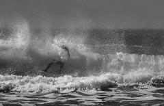 AquaMan (TW Olympia) Tags: surfing black white