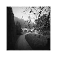 the stony bridge (Armin Fuchs) Tags: arminfuchs würzburg lavillelaplusdangereuse festung festungmarienberg bridge burggraben way trees square holga analog film mediumformat mittelformat 6x6 120mm ilfordfp4125 ilford winter mood