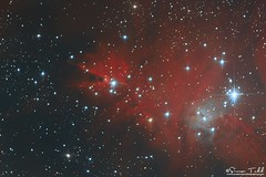 NGC 2264 - Cone Nebula and Christmas Tree Cluster in HaRGB (Simon Todd Astrophotography) Tags: ngc2264 christmastreecluster conenebula emission nebula monoceros hargb narrowband rgb longexposure deepsky deepspace space astrophotography astronomy ukastronomy skywatcher primalucelabs qhyccd qhy5lii qhy183m quattro carbon fiber pegasusastro starlightxpress baader newtonian backilluminatedsensor coldmos