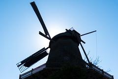 Backlit (KPPG) Tags: crazytuesday light windmühle windmill backlit potsdam sanssouci germany deutschland brandenburg hct