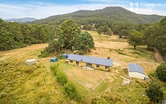 155 Vinces Saddle Road, Sandfly TAS